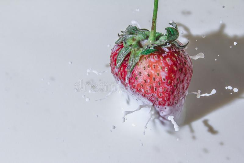 Delicious strawberries in cream. Sweet and delicious still life. Subject photo. advertising photography. strawberries and milk. red on white. frozen movement stock photo