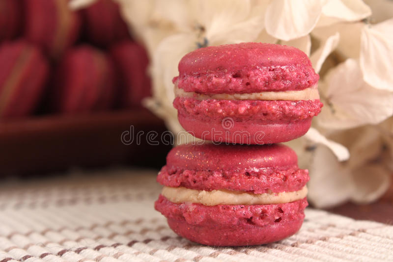 Delicious Strawberry Macarons royalty free stock image