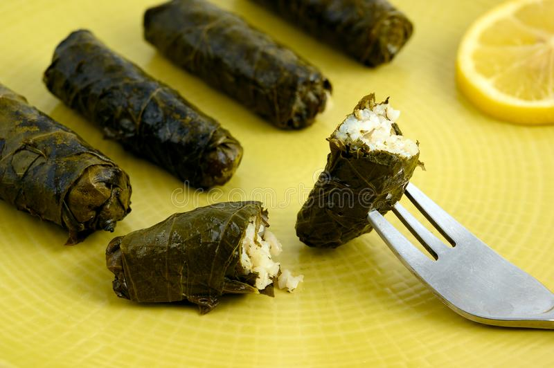 Stuffed grape leaves. Delicious stuffed grape leaves the traditional dolma of the mediterranean cuisine on yellow plate with lemon slice stock images