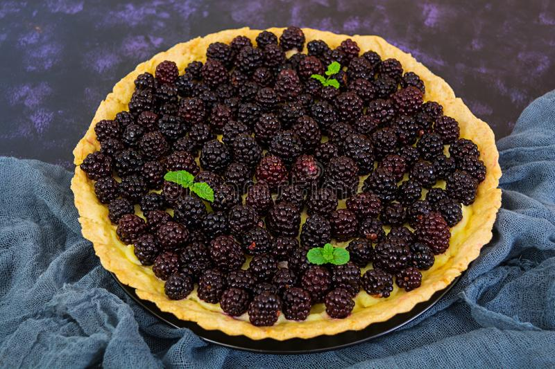Delicious tart with blackberries on dark background.  stock images