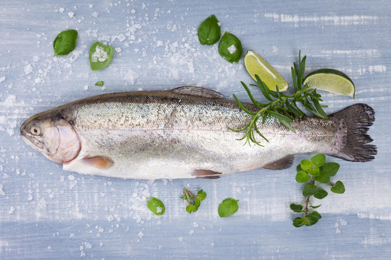 Delicious trout. Seafood. Fresh trout with sea salt, lime, rosemary and fresh basil leaves on blue and white wooden background, top view. Luxurious stock photo