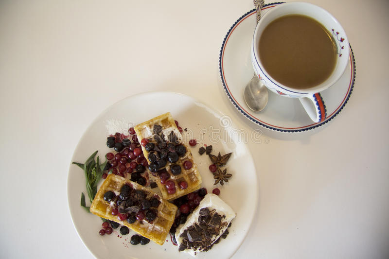 Delicious waffles with berries 05 stock photos