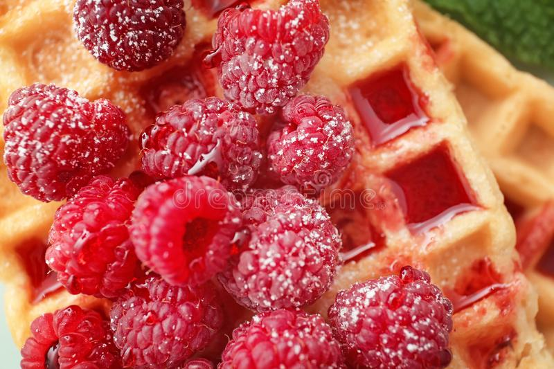 Delicious waffles with jam and raspberries, closeup stock image
