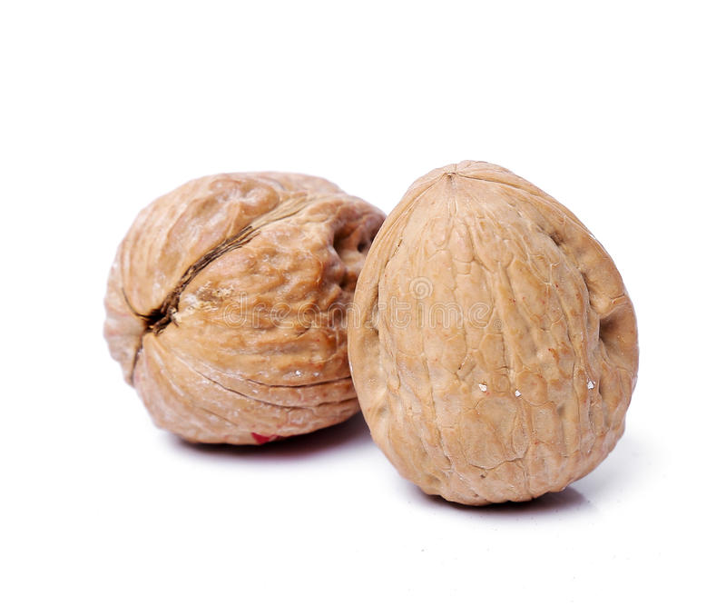 Delicious walnut royalty free stock images