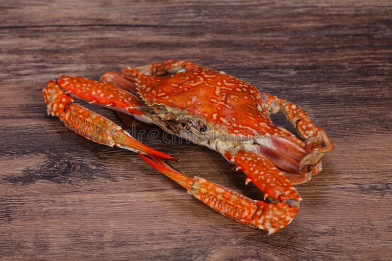 Boiled crab - ready for eat royalty free stock photo