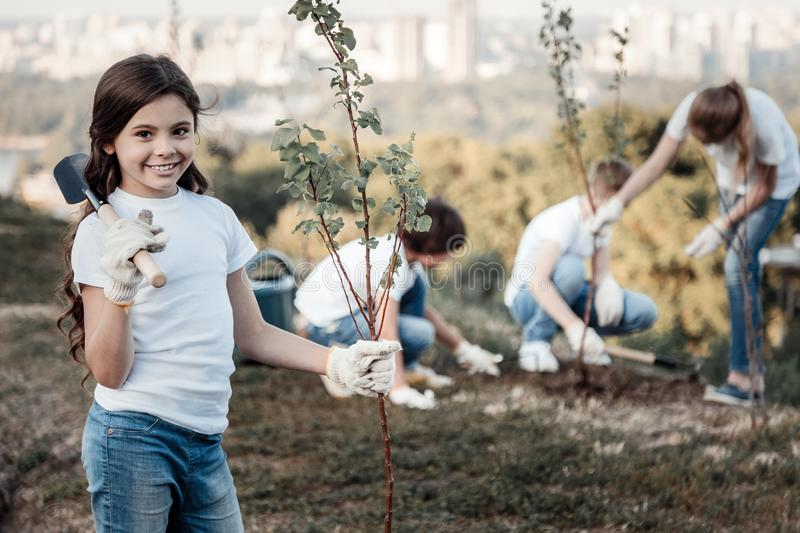 Delighted positive girl holing a young tree royalty free stock image
