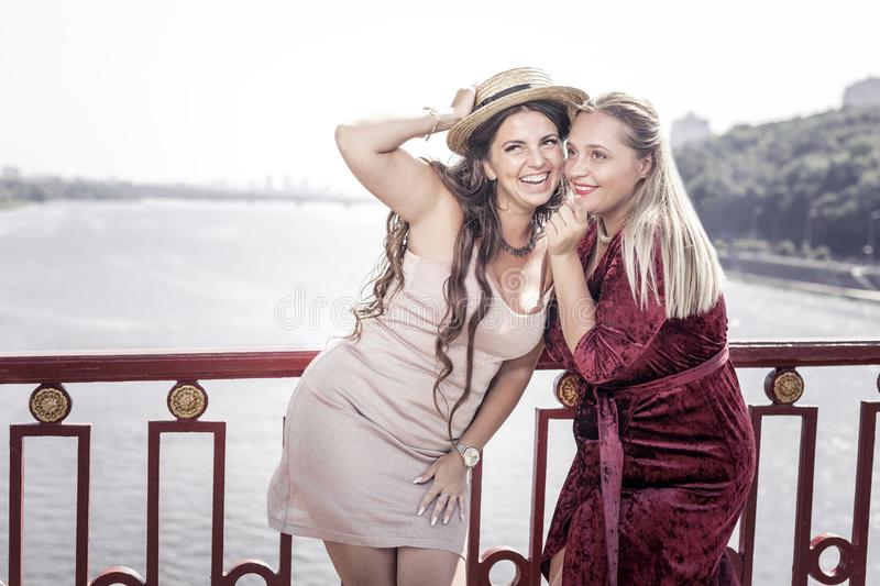 Delighted positive women being in a wonderful mood royalty free stock image