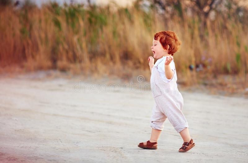 Delighted redhead toddler baby boy walking outdoors, at summer field stock photography