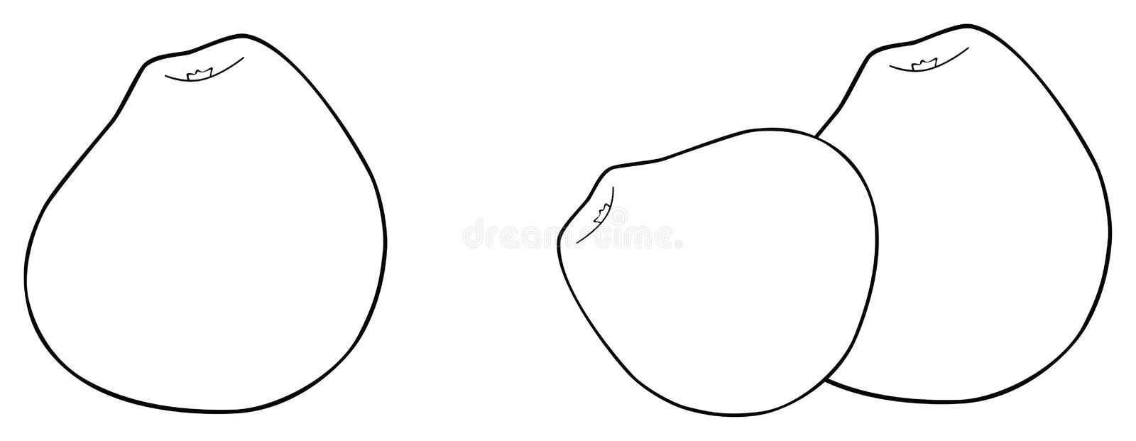Delightful garden - One and two pear-shaped apples royalty free illustration