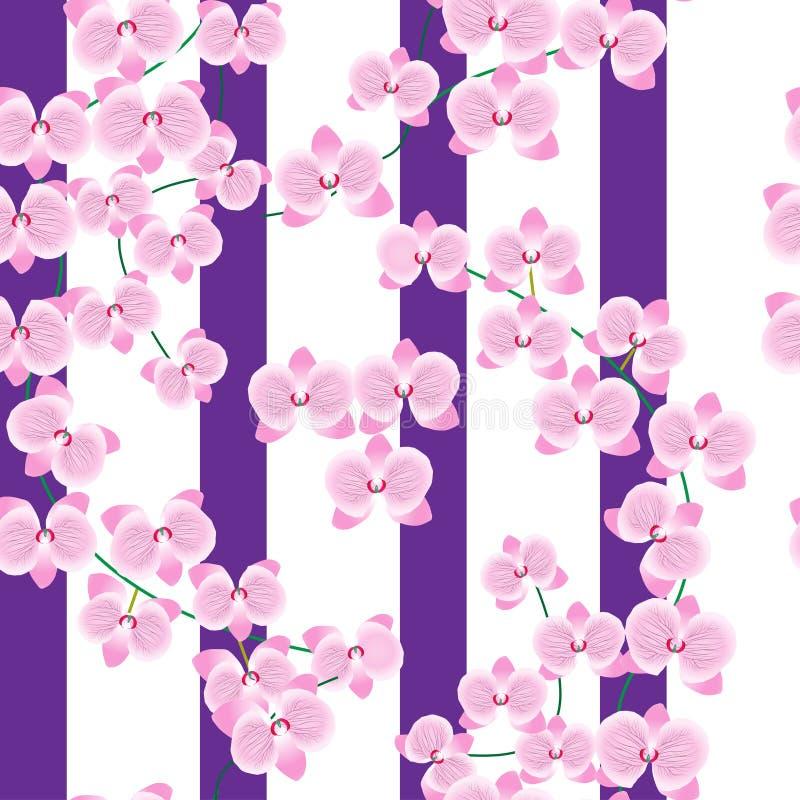 Delikat rosa ris av en orkidé på en vit bakgrund med breda lila remsor seamless modell Kan användas för tyger royaltyfri illustrationer