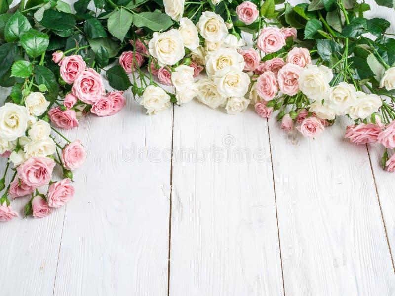 Delikata nya rosor på en vit träbakgrund arkivbild