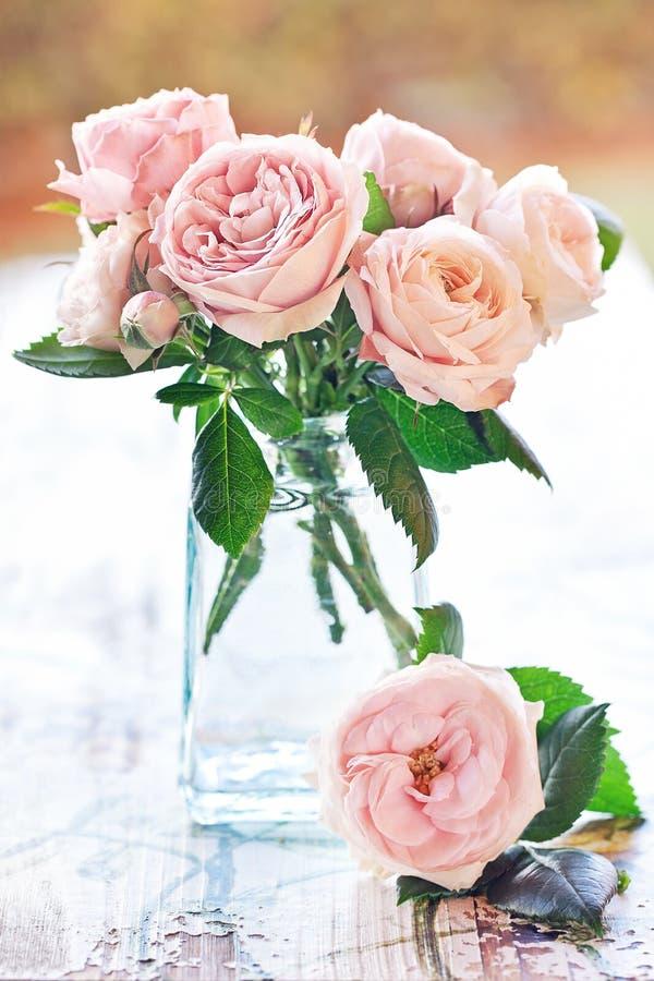delikatne różowe róże fotografia royalty free