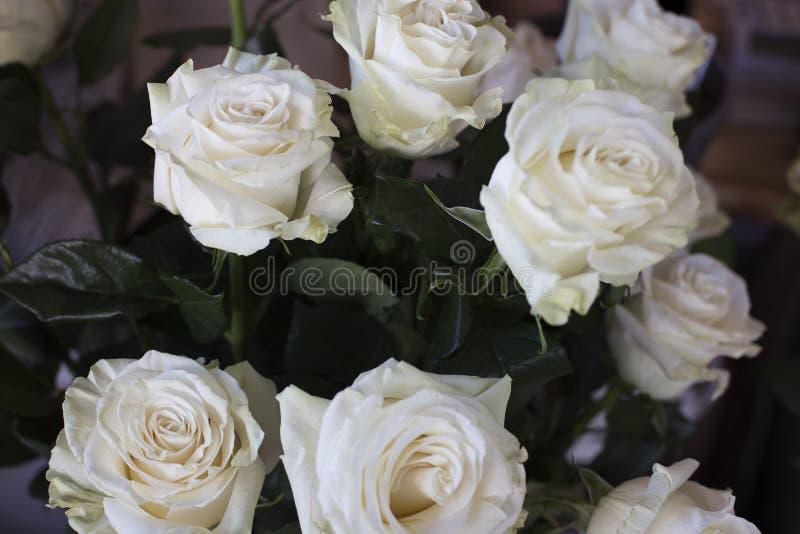 Delikatny bukiet białe róże na widok zdjęcie stock