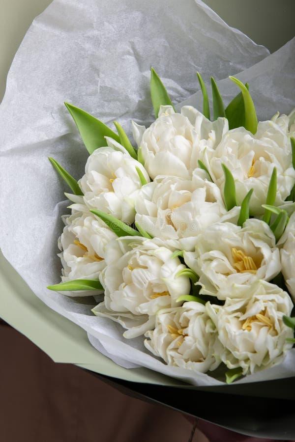 Delikatny bukiet biali tulipany zdjęcie royalty free