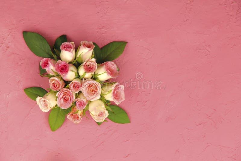 Delikatny bukiet różowe róże na różowym tle zdjęcia royalty free