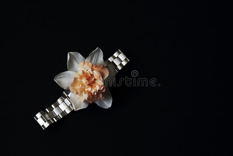 Delikatny kwiat narcyza i metalu bransoletka na ciemnym tle Sztuka światło i cień Minimalny styl, pojęcie symboliczny fotografia royalty free