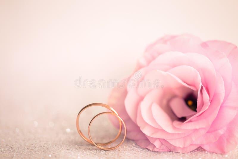 Delikatny Różowy Ślubny tło z pierścionkami i kwiatem obrazy royalty free