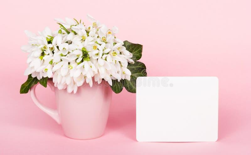 Delikatny różowy tło i biali kwiaty pusta szablon karta fotografia royalty free