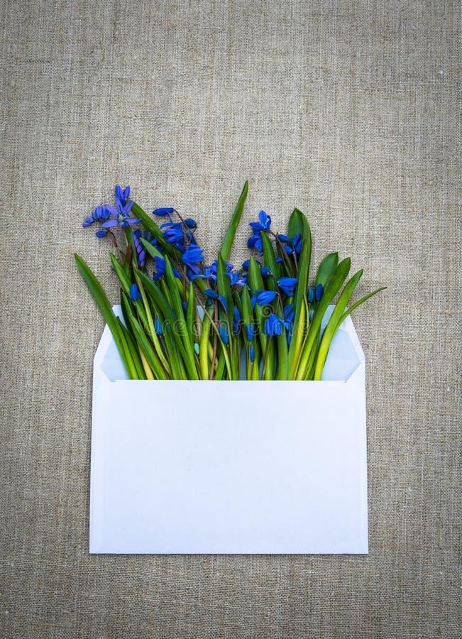 Delikatny wyznanie w miłości Biali kwiaty i koperta obrazy stock
