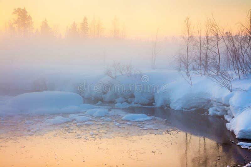 Delikatny zima zmierzch w lesie i rzece z mglistą mgłą obraz stock