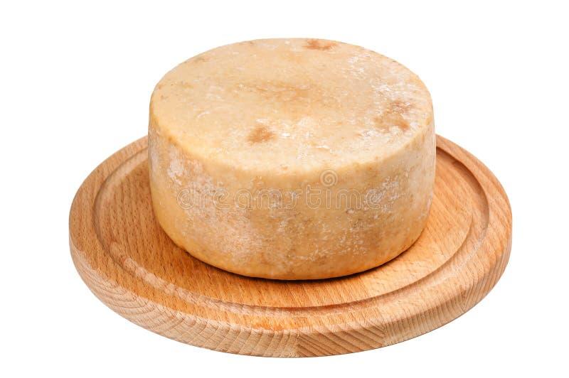 Delisious巴马干酪pecorino在白色的乳酪头 库存照片