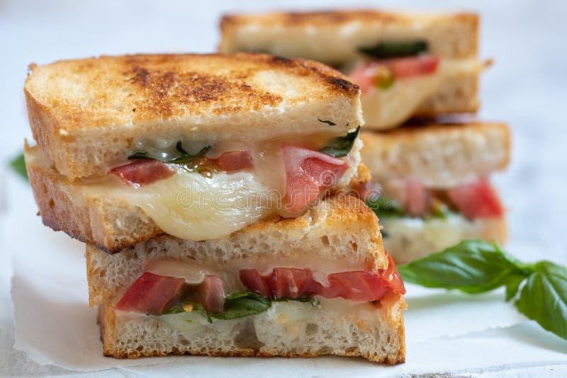 Delisious ha grigliato il panini caprese del formaggio con il pomodoro, mozzarella immagini stock libere da diritti