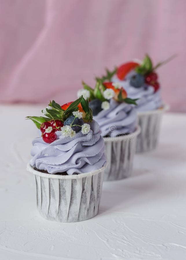 Cupcake with berries and mascarpone royalty free stock images