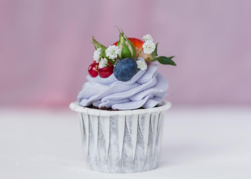 Cupcake with berries and mascarpone royalty free stock photography