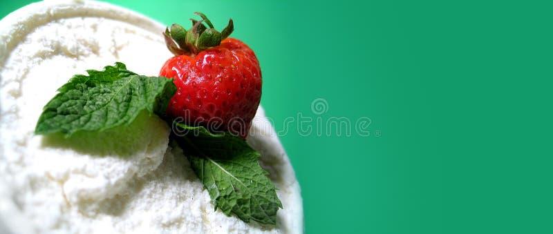 delite φράουλα στοκ εικόνες