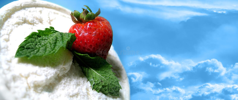 delite φράουλα διανυσματική απεικόνιση
