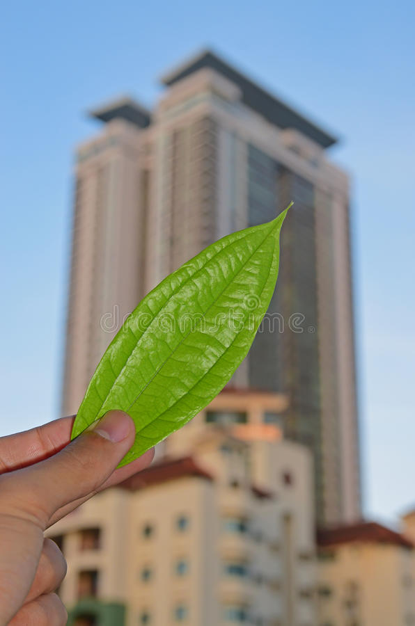 Delivering concept of green technology and environmental friendly building construction. Fingers holding green leaf with tall building apartment in the royalty free stock photos