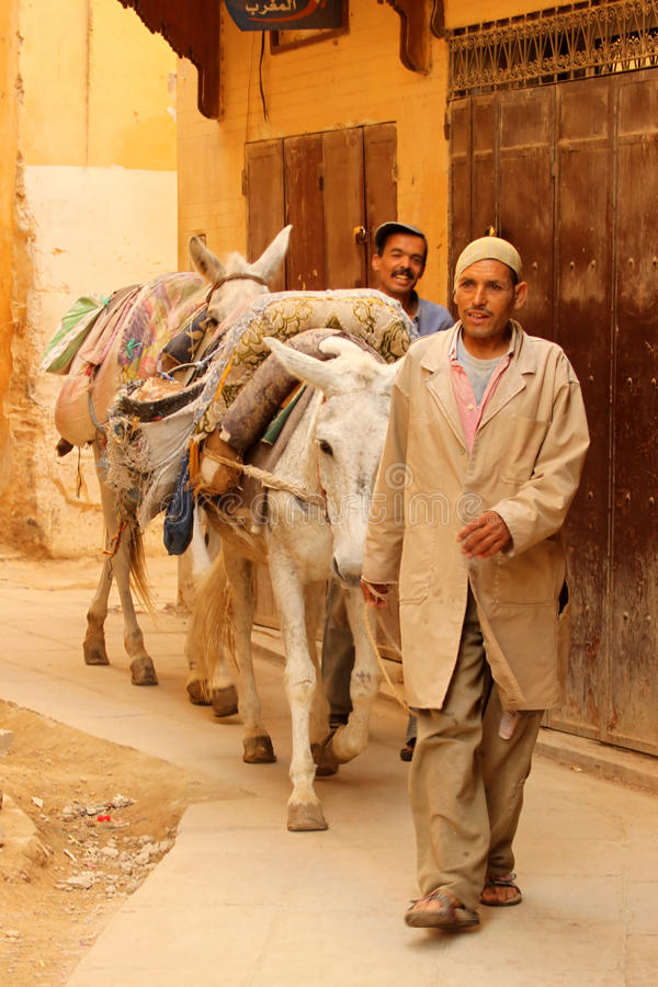 Delivering goods on a donkey. Two man delivering goods on donkey to the shops in the medina In Fes, Morocco royalty free stock photography