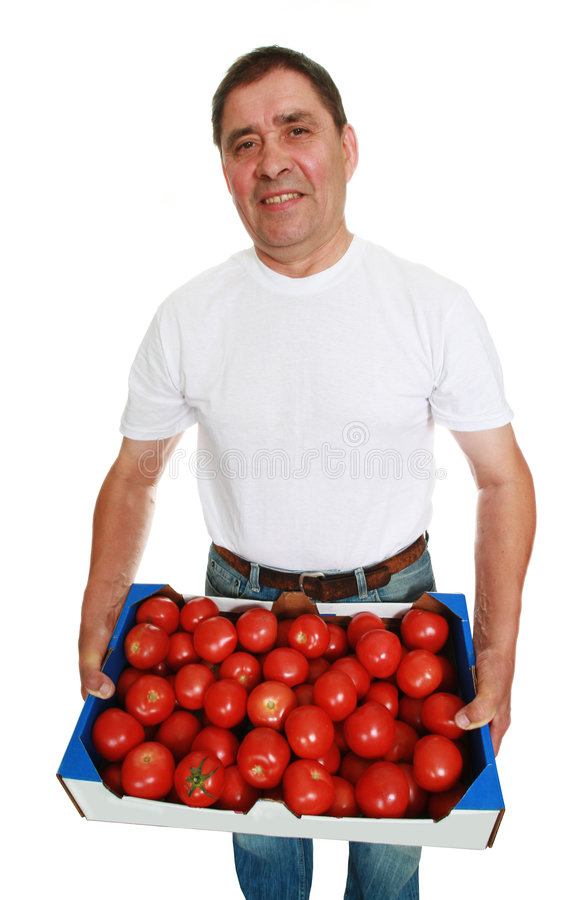 Delivery man with tomatoes. Delivery man with box of fresh tomatoes isolated on white stock photography