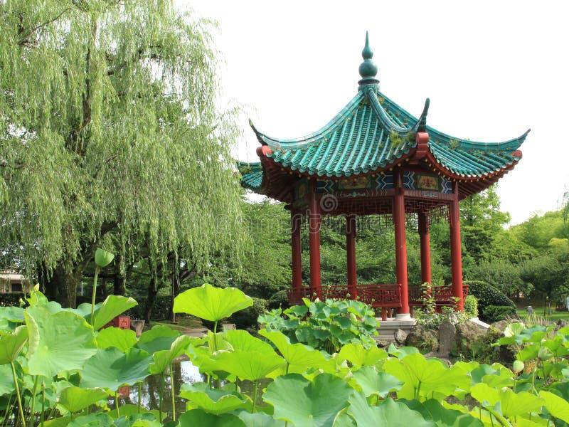 Download  Della Cina Wind〠Di Costruzione Immagine Stock - Immagine di cinese, piante: 56883273