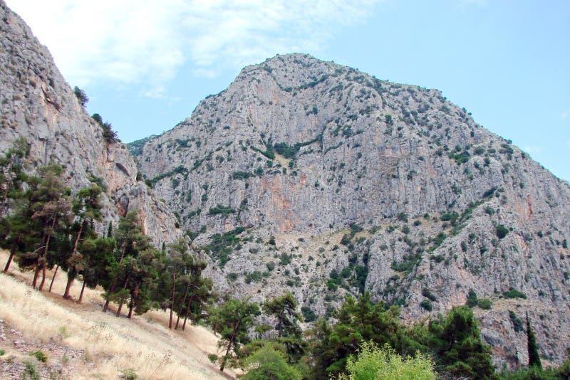 Delphi miasteczko Grecja 06 17 2014 Krajobraz natura skaliste góry blisko miasteczka Delphi w południe Grecja zdjęcie royalty free