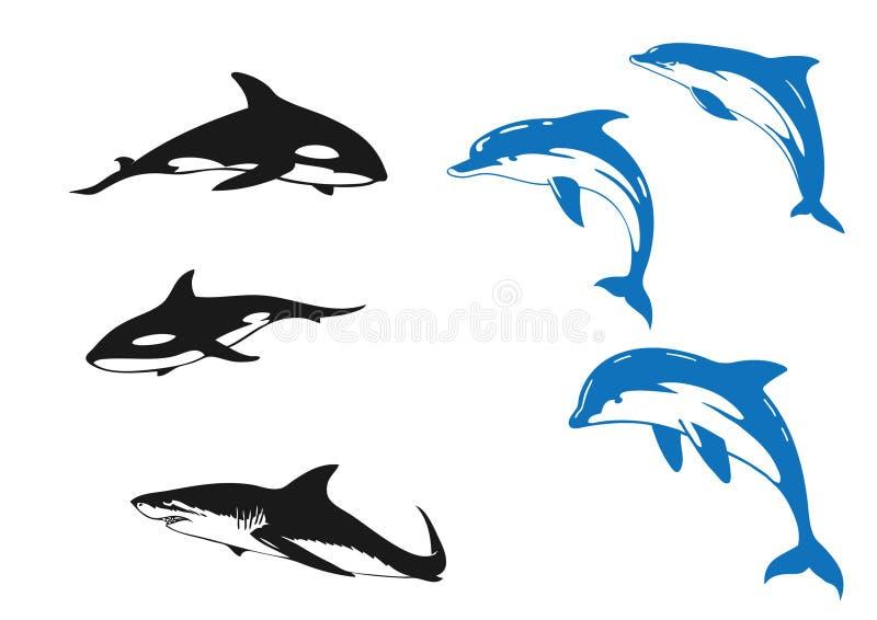 Delphin u. Haifisch lizenzfreie abbildung