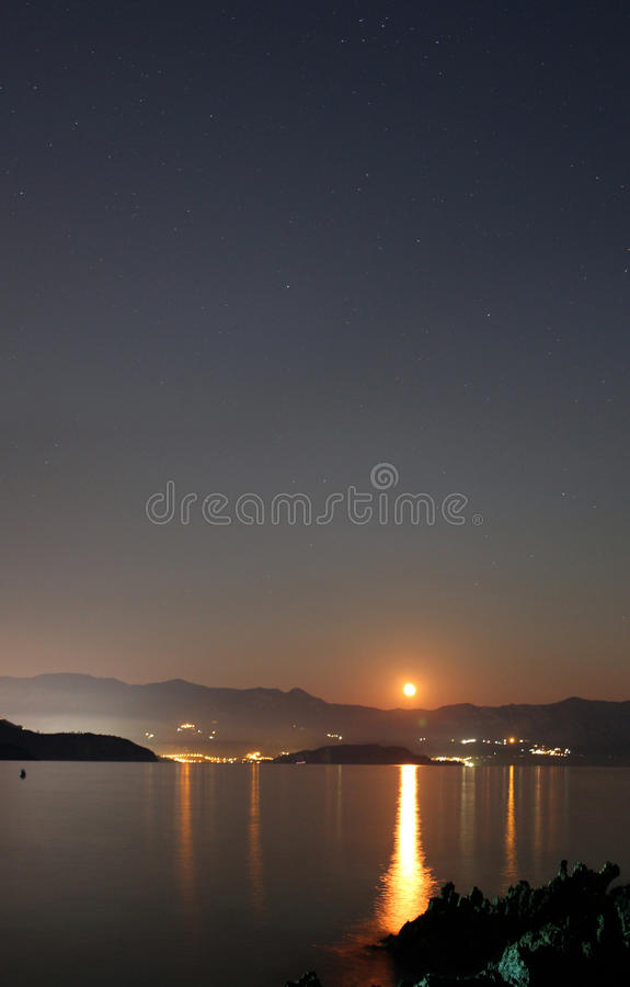 Download Delphine Jumps Over The Rising Moon Stock Images - Image: 26400854