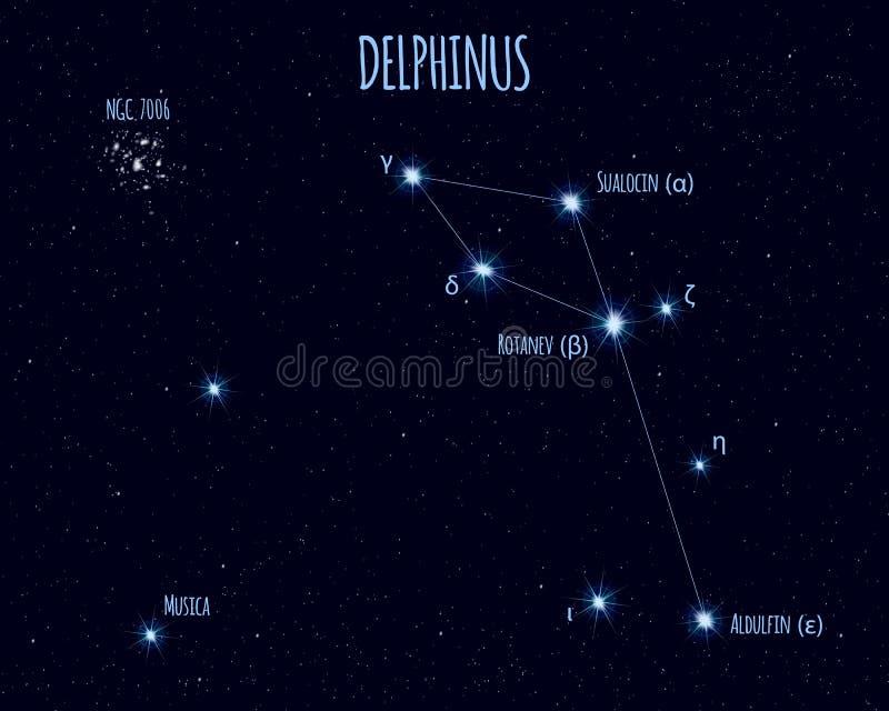 Delphinus gwiazdozbiór, wektorowa ilustracja z imionami podstawowe gwiazdy ilustracja wektor