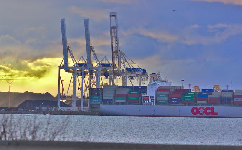 DELTA, CANADÁ - 14 de marzo de 2019: buque de carga grande que consigue cargado con el cargo en el puerto del delta imagenes de archivo