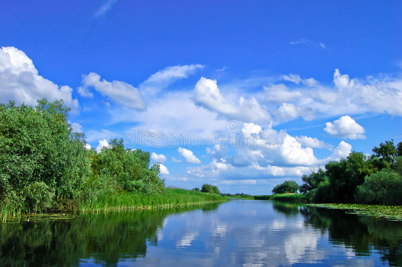Delta Channel. A watter channel in the Danube Delta royalty free stock photo