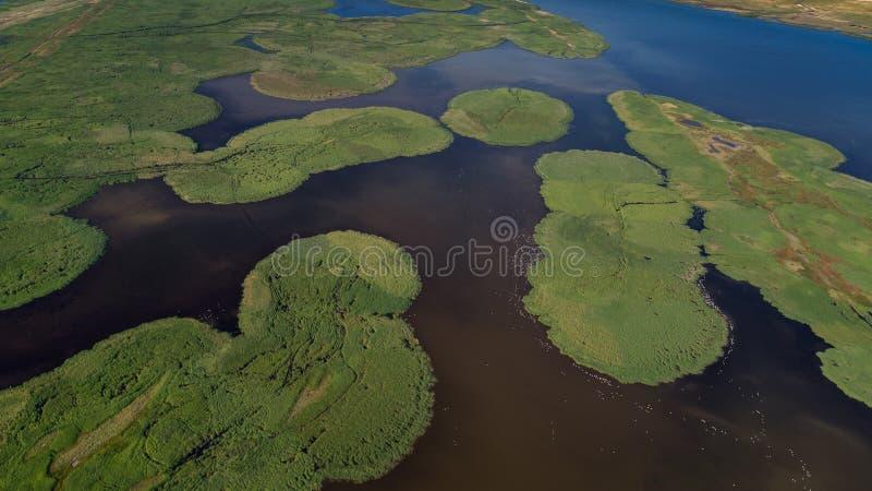 Delta de Danúbio, Romania fotos de stock royalty free