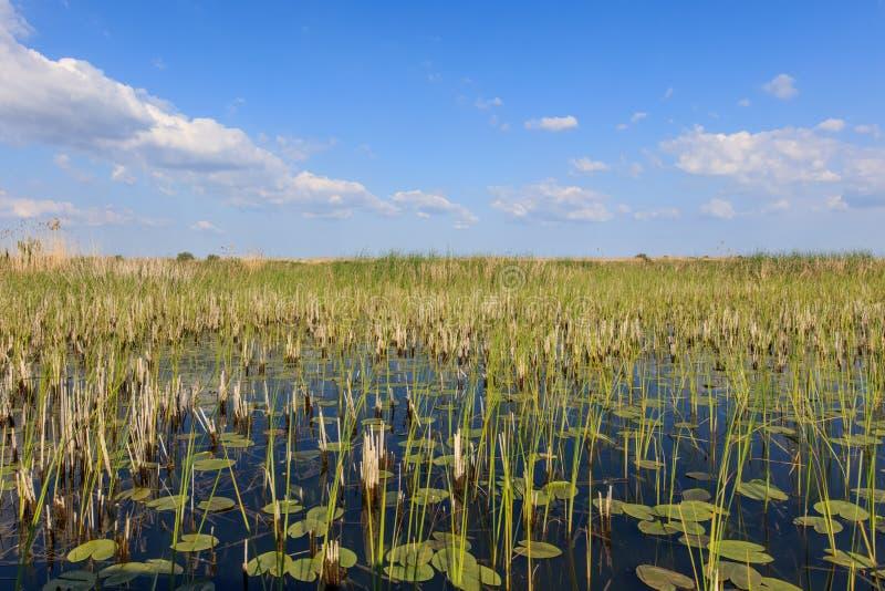 Delta de Danúbio, Romania imagens de stock royalty free