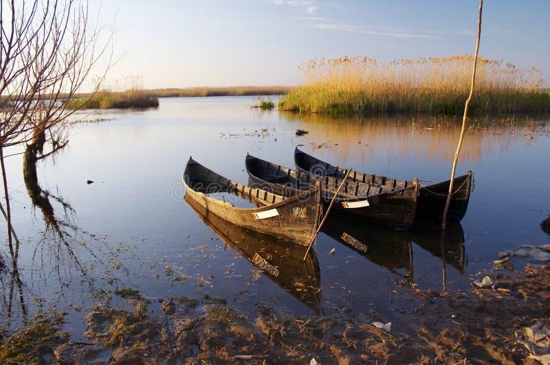 delta de Danubio foto de archivo libre de regalías