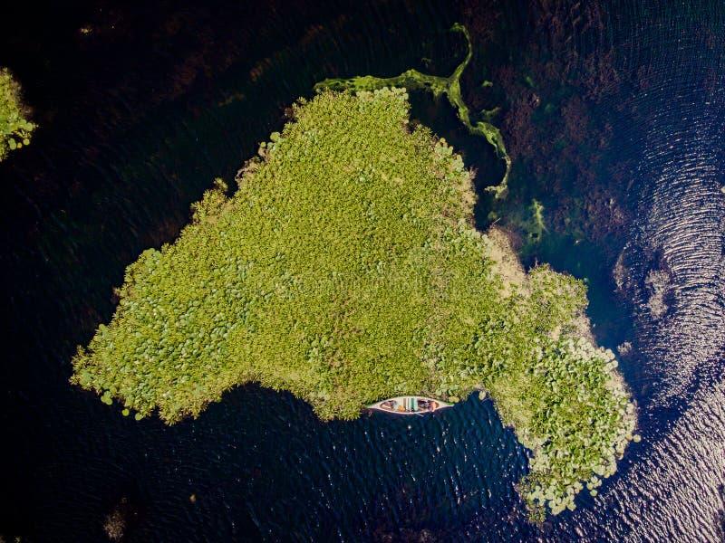 Delta de Danubio desde arriba de la visión aérea fotografía de archivo libre de regalías