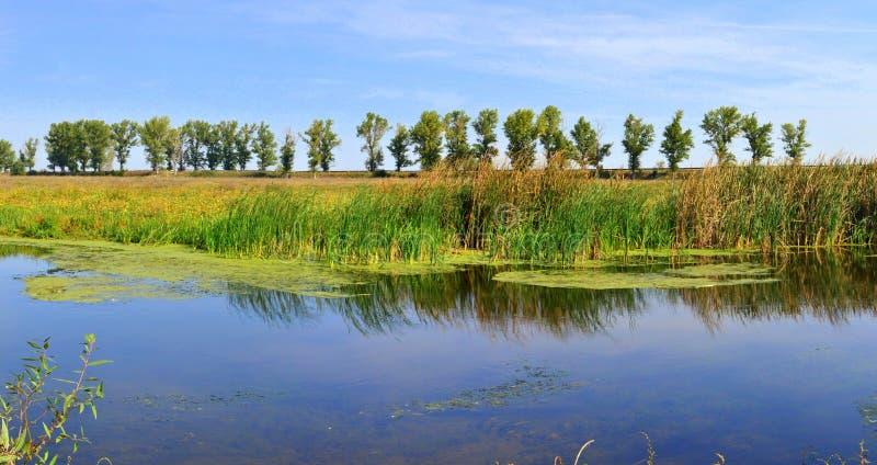Delta de Neajlov fotografía de archivo