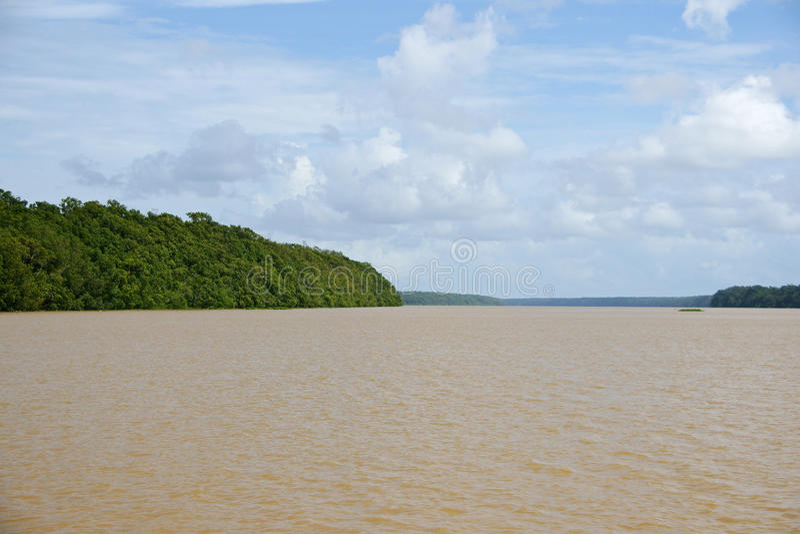 Delta de Orinoco fotografia de stock