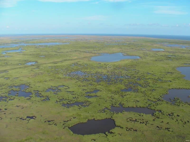 Delta del fiume Mississippi fotografie stock