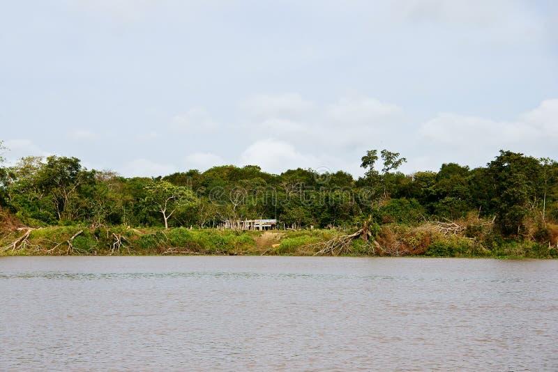 Delta del Orinoco fotografía de archivo libre de regalías