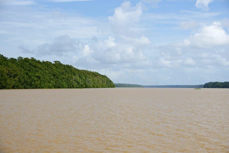 Delta del Orinoco fotografía de archivo