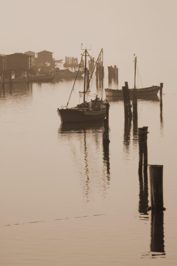 Delta del Po #2 imagenes de archivo